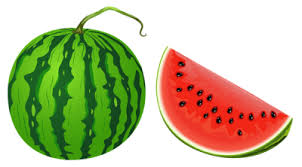 Vegetarian Journal Features Vegan Cooking Tips Column on Quick and Easy Dishes Using Watermelon